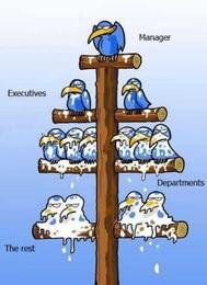 Hierarquia.